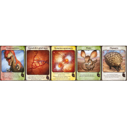 Evolution : Carte Trait