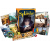 Splendor : Cities of Splendor