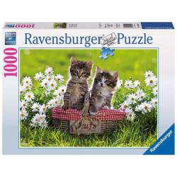 Puzzle 1000 p - Pique-nique au pré