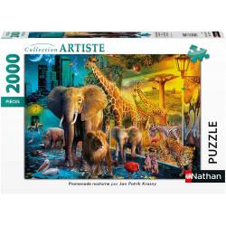 Puzzle N 2000 p - Promenade nocturne